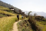 Village hiking as a cultural experience - 10 Days Helambu Trek